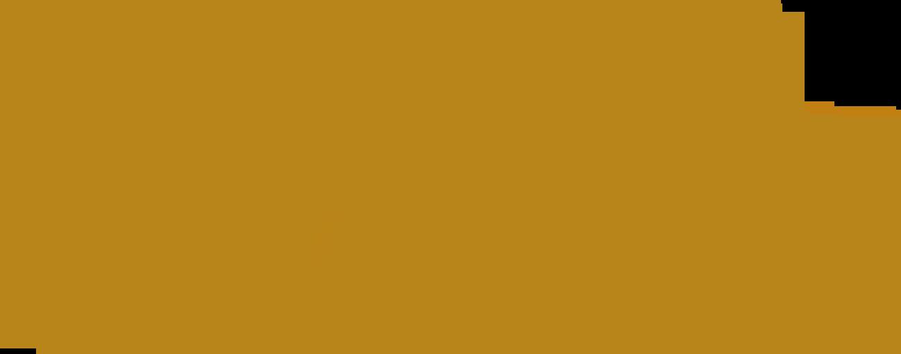 svatebni fotograf pelucha
